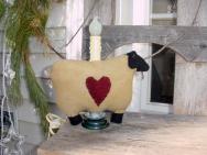 Small wool sheep light-